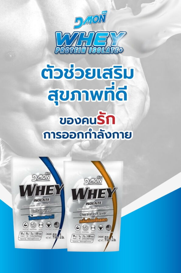 Dmon Whey Protein copy [Recovered] (1)-01 (Large)